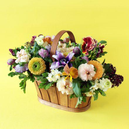 早春の花を集めて作るバスケットアレンジメント