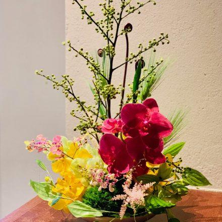 様々な蘭を使った初春アレンジメント (生花)